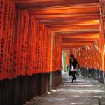 タイ人の日本への好感度