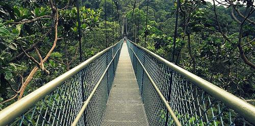 Pa Nai Krung バンコク 森 ジャングル